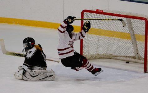 Girls hockey falls short