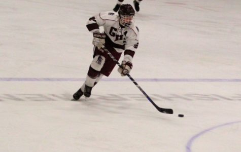 Boys hockey falls to Warriors