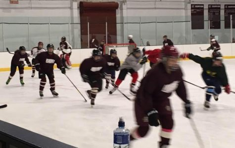 Girls ice hockey skates into reality