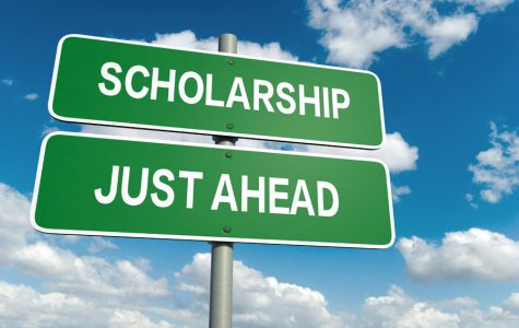 Scholarship opportunities offered by Cell Signaling Technology