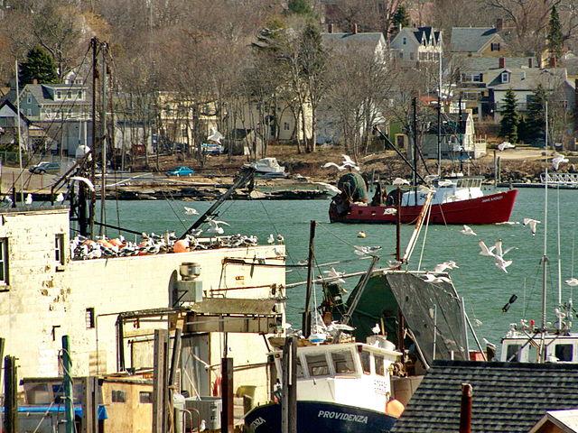 Gloucester+Harbor