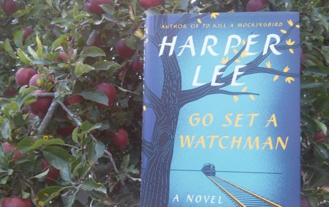 The much anticipated novel Go Set A Watchman by Harper Lee was published July 14th, 2015