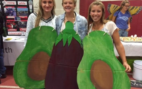 (From left) Marlaina Fulmer, Julia Wood, and Rachel Alexander promoting healthy eating at the health fair