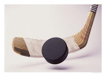 Hockey team ready for promising season