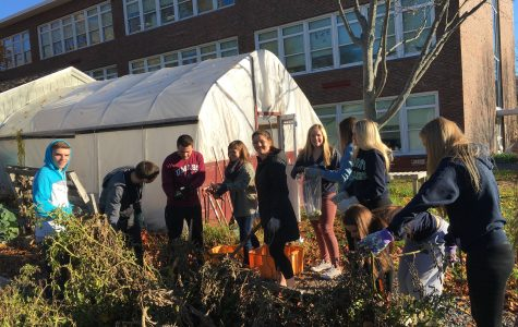 Environmental Science students partner with Backyard Growers