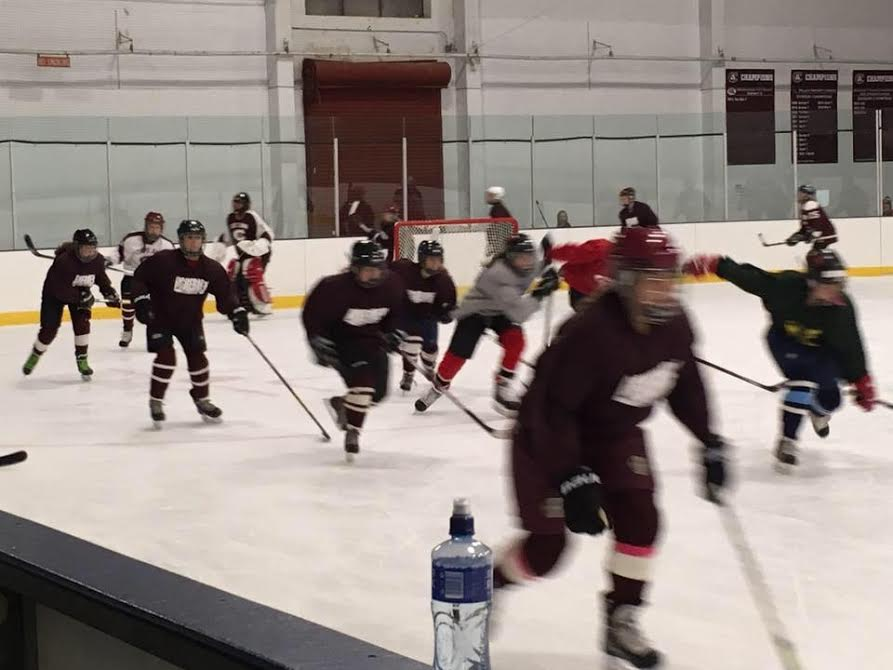 Members of the first GHS girls hockey team since 2007 take the ice for practice