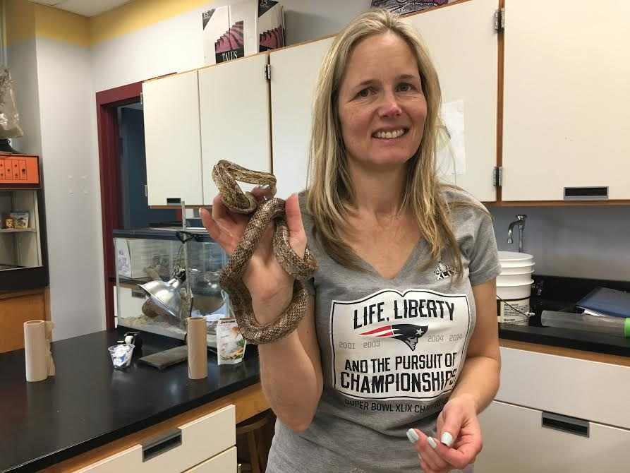 Biology+teacher+Jessica+Lichtenwald+with+her+pet+snake
