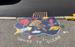 GHS teen artists can help keep our oceans clean