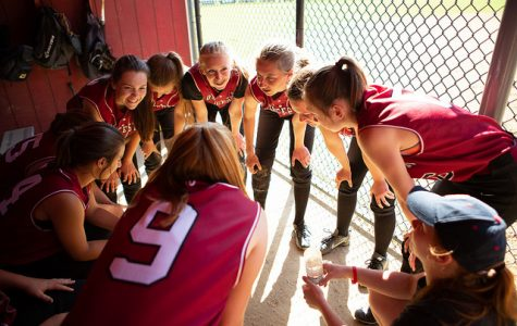 Gloucester softball claims NEC title
