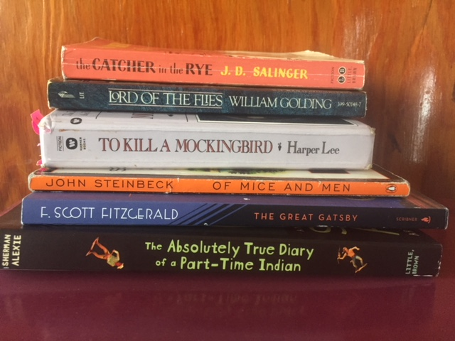 These+titles+frequently+appear+on+the+American+Library+Association%27s+frequently+challenged+books+lists.+