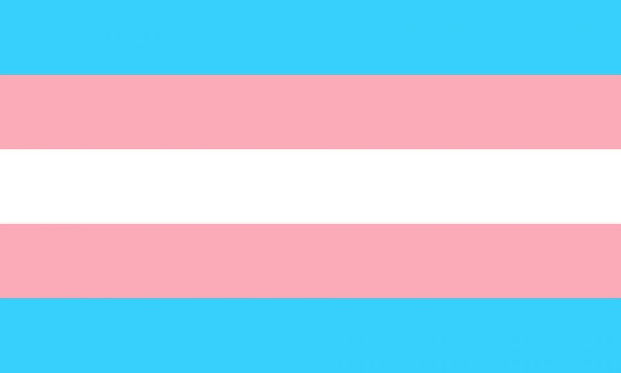 The+Transgender+Pride+Flag+created+by+American+trans+woman+Monica+Helms+in+1999