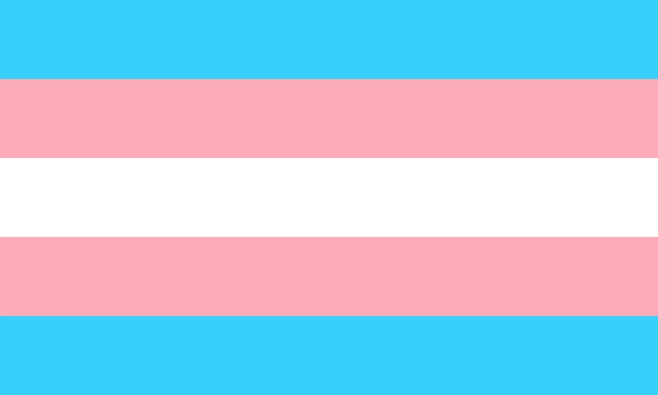 The Transgender Pride Flag created by American trans woman Monica Helms in 1999