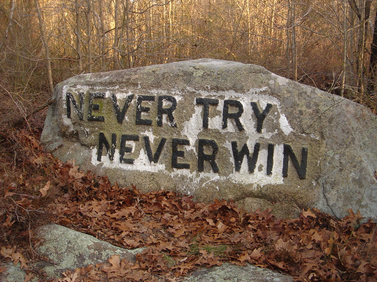 One of Dogtown's famous Babson boulders- inscribed with an inspirational phrase.