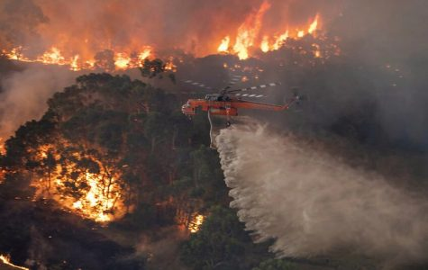 What you need to know about the Australia Wildfires